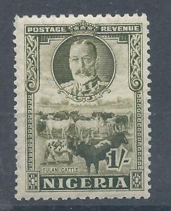 Nigeria 49 H