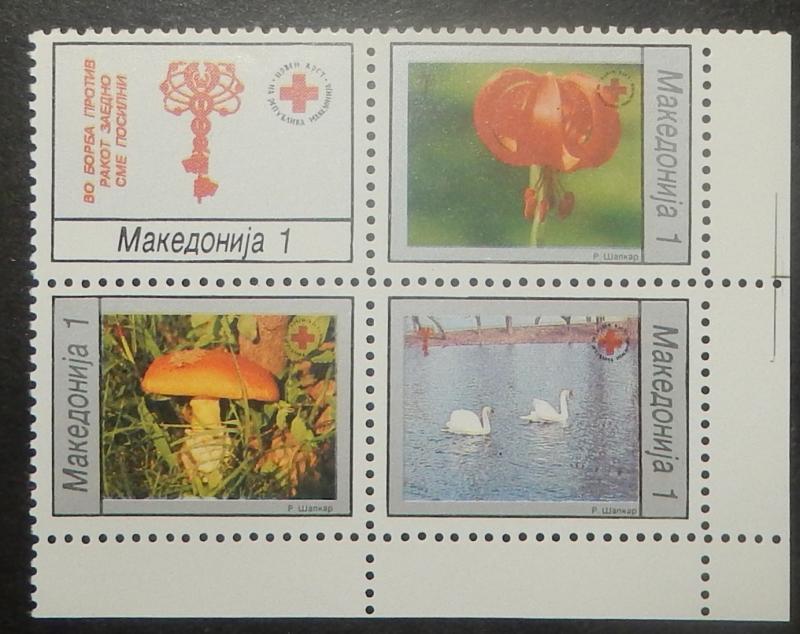 Macedonia RA44-47. 1994 Red Cross, se-tenant block, NH