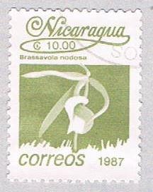 Nicaragua Flower olive 10 (AP117027)