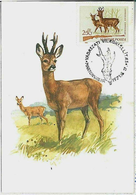 32115 - HUNGARY - POSTAL HISTORY - MAXIMUM CARD  Deer HUNTING FaunaI 1971