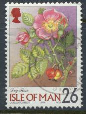 Isle of Man   SG 782 SC# 800   Flowers Dog Rose     see details