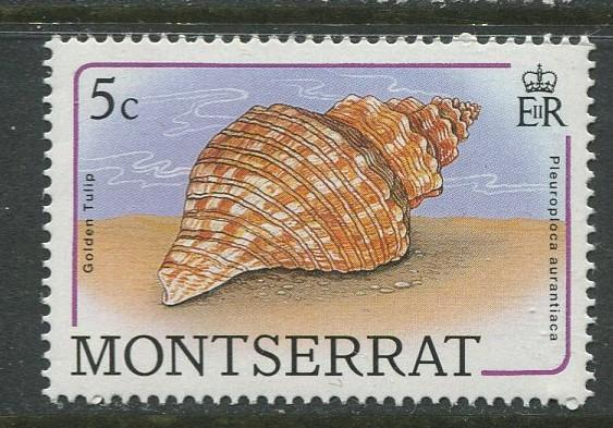 Montserrat - Scott 681 - QEII Definitive- Shells -1988 - MNH -Single 5c Stamp