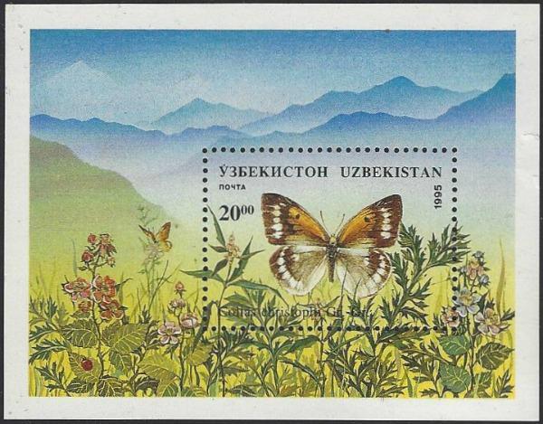 Uzbekistan #87 MNH Souvenir Sheet Butterfly