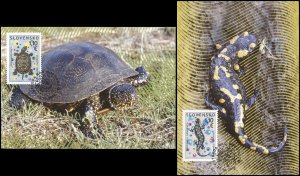 Slovakia. 2009. Amphibia (Mint) Set of 2 Maxi Cards