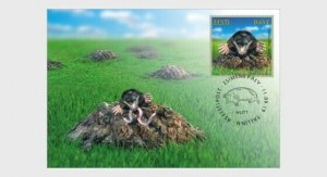 H01 Estonia 2019 Estonian Fauna – The Mole  Maxi Cards
