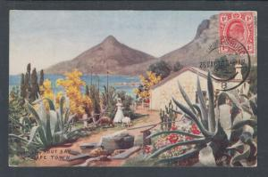 Transvaal Sc 282 on 1910 color Tuck's PPC to US, Farm Near Hout Bay, Cape Town