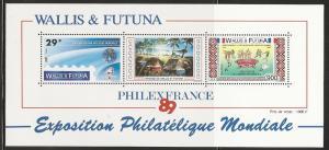 Wallis and Futuna Islands 384a 1989 Human Rights s.s. NH