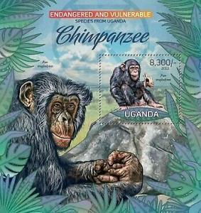 Uganda - Endangered Species - Chimpanzees - Souvenir Sheet - 21D-044