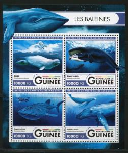 Guinea MNH S/S Whales Marine Life 2016 4 Stamps