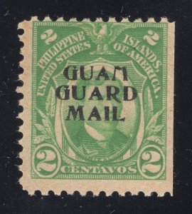 Guam# M1 2 Cents, Green - Guam Guard Mail - Unused - Disturbed Gum w/ Gum Loss