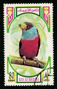 Bird, Ras al-Khaimah,  (ТS-2253)
