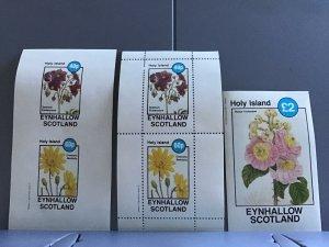 Holy Island   Scotland Flowers plants Cineraria Renifolia  MNH stamps  R24120