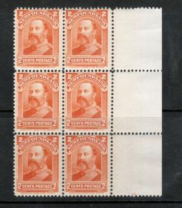 Newfoundland #81 Mint Fine - Very Fine Never Hinged Block Of Six