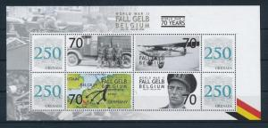 [81136] Grenada 2008 Second World war Fall Gelb Belgium Sheet MNH