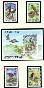 Montserrat 672-76 MNH 1988 Birds (Easter)