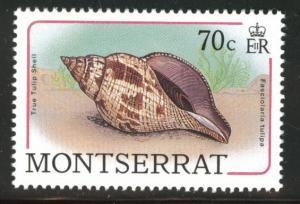 Montserrat Scott 688 MNH** sea shell 1988 stamp