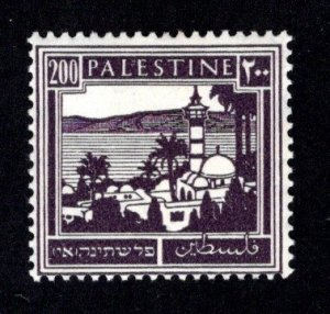 PALESTINE  SC# 81  AVF/MOG