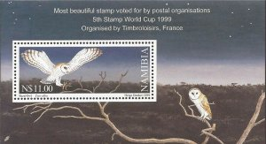 Namibia - 1999 Western Barn Owl - Stamp Souvenir Sheet - Scott #950