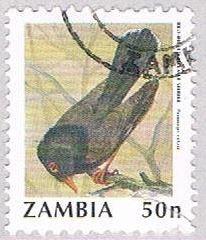 Zambia Bird 50 2 (AP112721)