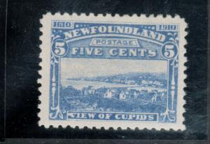 Newfoundland #91 Very Fine Never Hinged