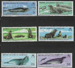 British Antarctic Territory (BAT) Scott 96-101 MNH** Seal set