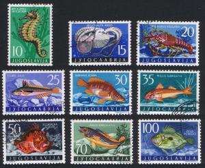Yugoslavia Adriatic Sea Creatures 9v SG#825-833 SC#452-460