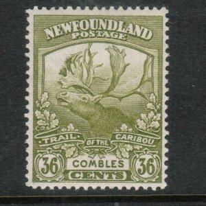 Newfoundland #126 Very Fine Never Hinged