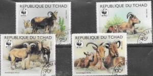 Africa Chad #574 -577 Mouflons  Wild Sheep