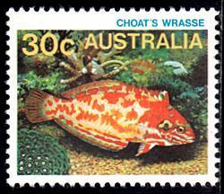 Australia # 908 mnh ~ 30c Fish - Choat's Wrasse