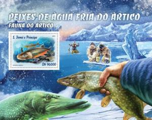 SAO TOME E PRINCIPE 2016 SHEET ARCTIC FISHES MARINE LIFE st16303b
