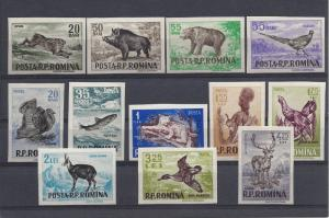 Romania, 1082-93 (12v). Animals Imperf VF Singles, MNH