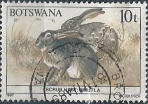 Botswana 411 (used) 10t scrub hare (1987)
