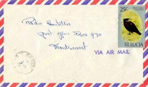Saint Lucia 25c Brown Noddy 1976 Bexon, St. Lucia Airmail to Montserrat.