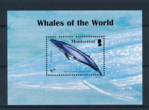 [40596] Montserrat 2008 Marine Life Whales MNH Sheet