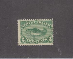 NEWFOUNDLAND # 47  F-MH  2cts  1896 CODFISH / GREEN  CAT VALUE $50