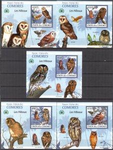 {{097} Comoros 2009 Birds Owls 5 S/S Deluxe MNH**