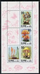 North Korea 1993 Fungi sheetlet #2 containing 20ch, 30ch,...