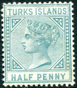 TURKS & CAICOS ISLANDS-1882 ½d Blue-Green Sg 53 AVERAGE MOUNTED MINT V31495