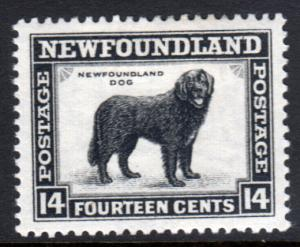 Newfoundland GV 1932 14c Black SG216 Mint Hinged