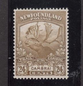 Newfoundland #125 XF Mint