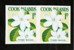 Cook Stamps # 148 XF OG NH Pair Imperf Rare