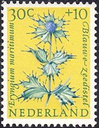 Netherlands # B347 mnh ~ 30¢ + 10¢ Flower - Blue Sea Holly