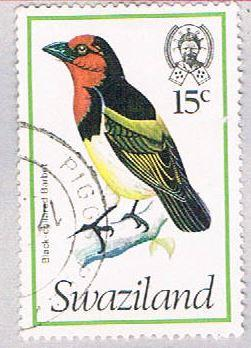 Swaziland 252 Used Barbet 1976 (BP2604)