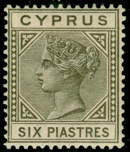 CYPRUS SG21, 6pi olive-grey, M MINT. Cat £75.