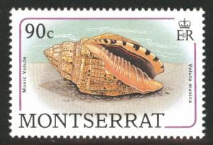 Montserrat Scott 689 MNH** sea shell 1988 stamp