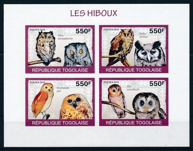[96529] Togo 2010 Birds Vögel Oiseaux Owls Imperf. Sheet MNH