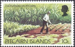 Pitcairn Islands # 168 mnh ~ 10¢ Farming