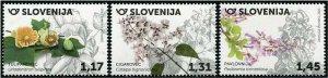 HERRICKSTAMP NEW ISSUES SLOVENIA Sc.# 1379-81 Flora 2020 Hydrangeas