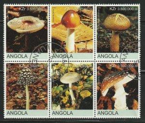 Angola Mushrooms Used No Catalogue