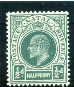 Natal 1904 KEVII ½d blue-green superb MNH. SG 146. Sc 101.